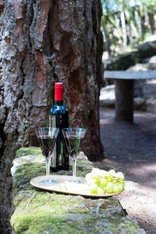 Picknick met fles rode wijn en glazen, brood en kaas