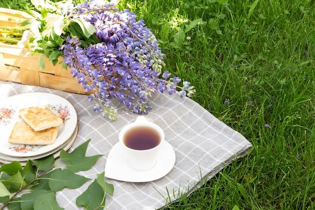 Picknick met het boek van het theebaksel op een plaid in een park op een groen de vakantieconcept van de grasreis