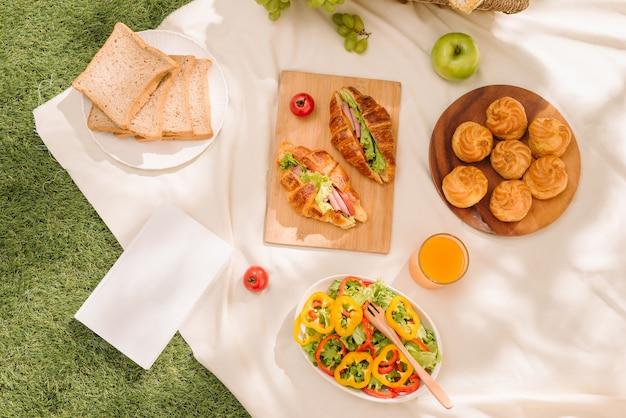 Picknick rieten mand met voedsel, brood, fruit en jus d'orange op een rood en wit geruite doek in het veld met groene natuur achtergrond. picknick concept.