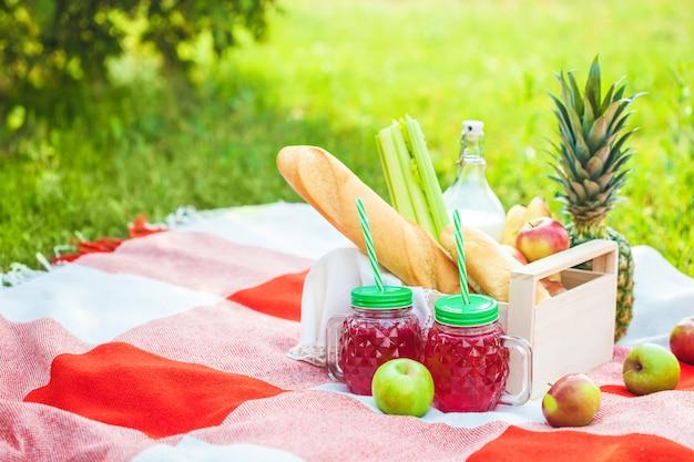 Picknickmand, fruit, sap in kleine flesjes, appels, melk, ananas zomer, rust plaid groen gras copyspace