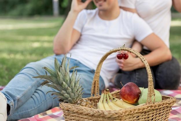Picknickmand met fruit dichtbij zicht