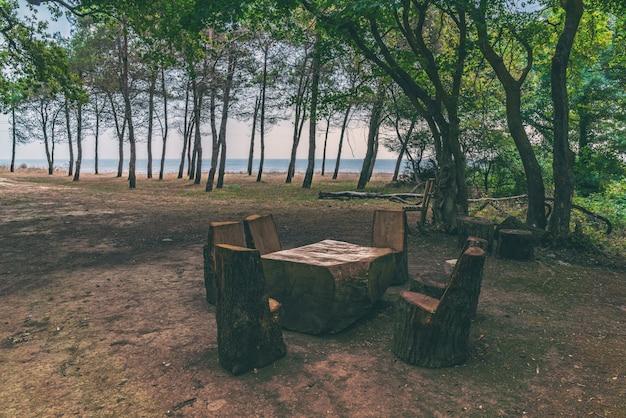 Picknickplaats met houten tafel en banken in het bos