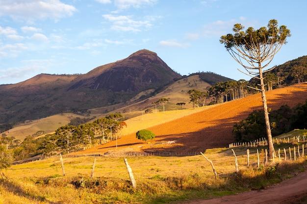 Pico do papagaio - rotsachtige berg in brazilië