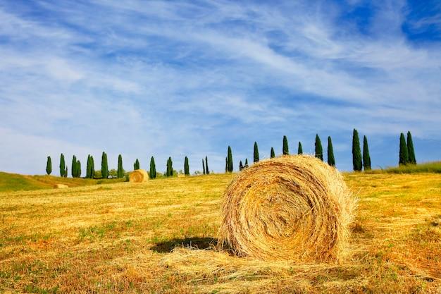 Picturale landelijke landschappen van toscane