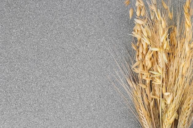 Pieken van tarwe en gerst op een achtergrond van grijs graniet.