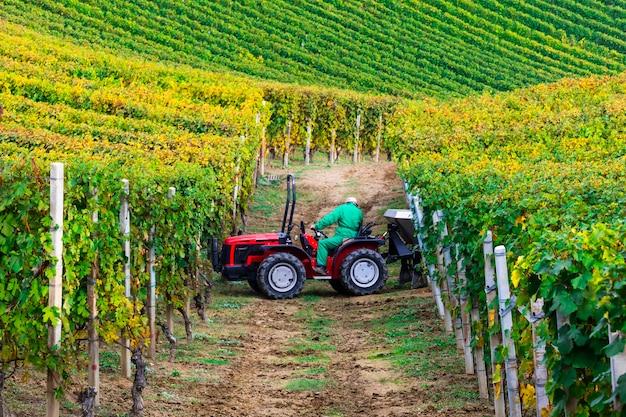 Piemonte, beroemd wijngebied van italië