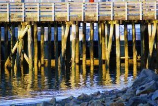 Pier, kleur