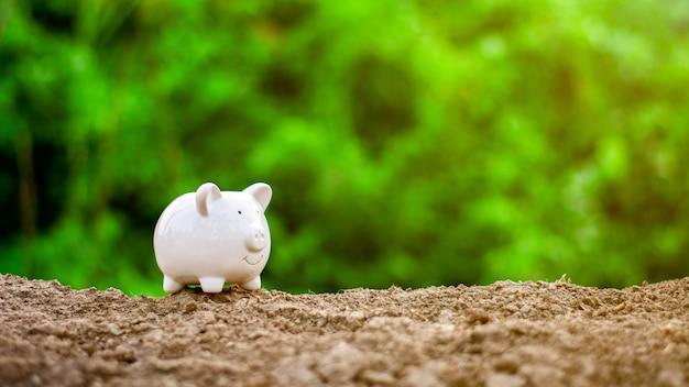 Piggy bank op de grond. - bewaar en beheer concept.