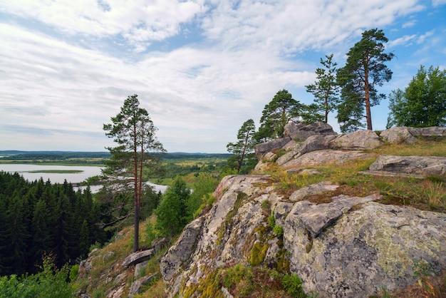 Pijnbomen op een rotsachtige klif