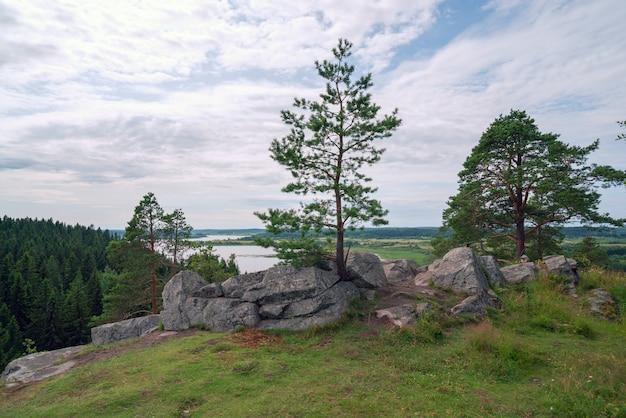 Pijnboombomen onder de stenen op een rotsachtige klif
