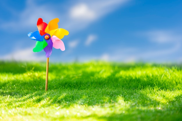 Pinwheels op weide op zonnige dag