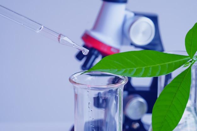 Pipet die boven reageerbuis op steekproefchemische stof in kruideninstallaties valt