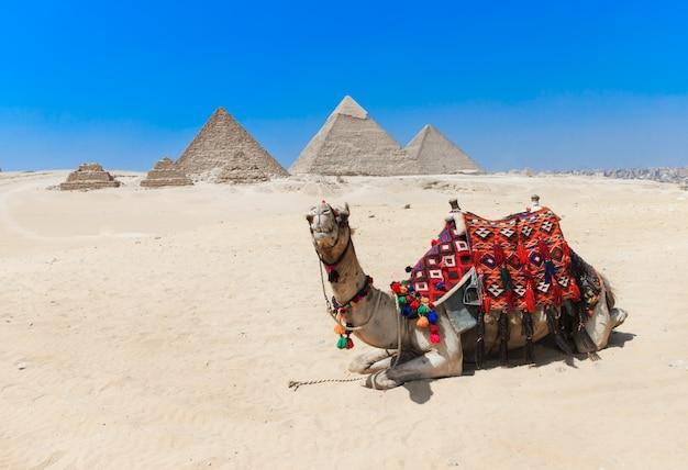 Piramides met een giza in caïro, egypte.