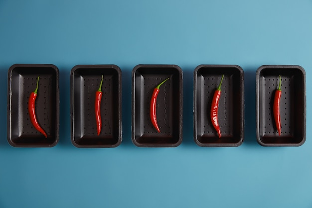 Pittig ingrediënt voor uw gerechten. dunne rode chilipeper op zwarte bakjes geïsoleerd op blauwe achtergrond, verpakt in de supermarkt, kan vers of droog gegeten worden, gebruikt om chilipoeder te maken, om barbecue op smaak te brengen