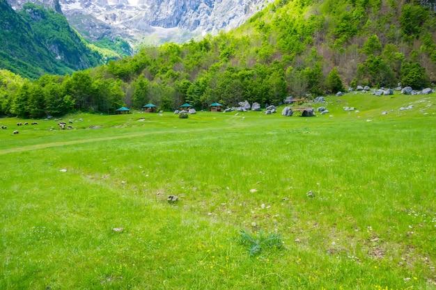 Pittoreske groene weiden in de buurt van de grote hoge bergen.