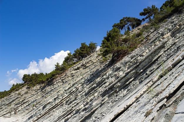 Pittoreske rotsen op een wild stenen strand. een blauwe lucht en een paar wolken sieren het zomerlandschap. bos- en kampeerterrein aan de rand van de badplaats gelendzhik. rusland, kust van de zwarte zee