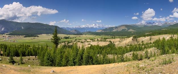 Pittoreske vallei in het altaj-gebergte. zomergroenten van weilanden en bossen, sneeuw op de toppen. panorama.
