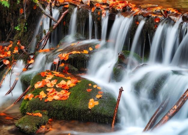 Pittoreske waterval in de herfst bos