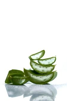 Plakjes aloë vera bladeren op een witte ondergrond. aloë vera is een zeer nuttig kruidengeneesmiddel voor huidverzorging en haarverzorging.