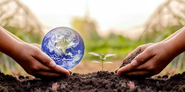 Planeten en zaailingen in mensenhanden op de grond uitwisselen