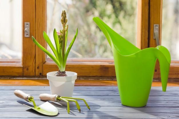 Plant en tuin stilleven