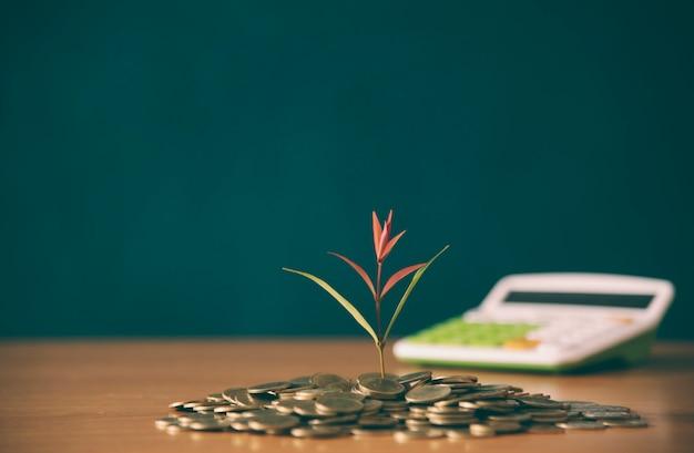 Plant groeit in besparingen munten - geld, financiële, bedrijfsgroei concept.