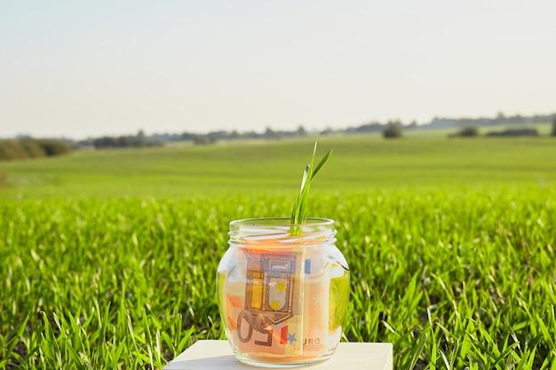 Plant groeit uit glazen spaarpot met contante bankbiljetten.