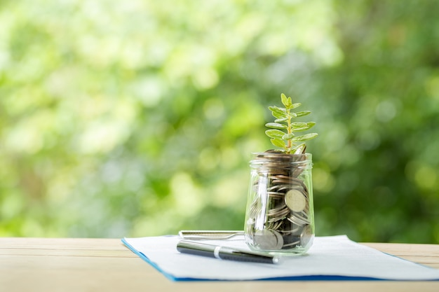 Plant groeit van munten in de glazen pot op wazig aard