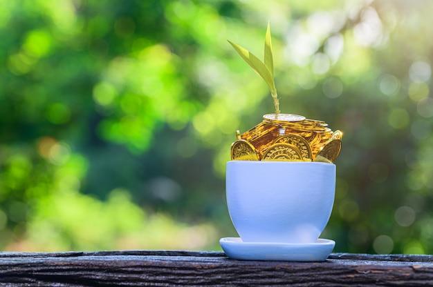 Plant groeit van munten in een kom