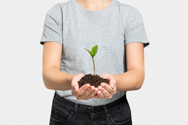 Plant in de hand voor herbebossing om klimaatverandering te voorkomen
