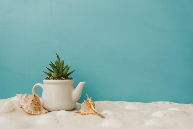 Plant op zand