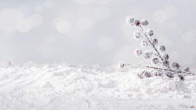 Plant twijgen op bank van sneeuw en sneeuwvlokken