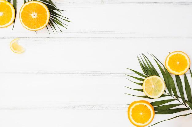 Plant verlaat in de buurt van verse citrusvruchten