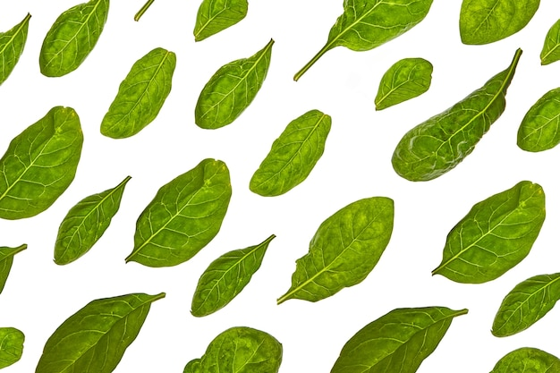 Plantaardige horizontale patroon van verse natuurlijke biologische spinazie bladeren diagonaal gerangschikt op een witte tafel. bovenaanzicht.