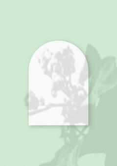 Plantaardige schaduwen bovenop een vel in de vorm van een boog van getextureerd wit papier op een groene tafelachtergrond a