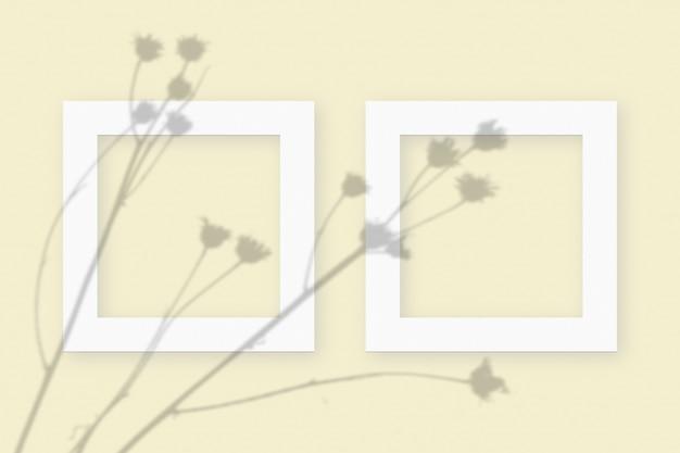 Plantaardige schaduwen gesuperponeerd op 2 vierkante frames van getextureerd wit papier op een gele tafelachtergrond