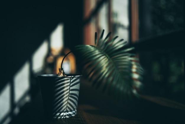 Plantdecoratieontwerp in minimalistische stijlachtergrond, kopje drank op natuurlijke houten tafelruimte, modern groen muurinterieur in een kamer met thuiscafés, warme drank en zonlicht in de ochtend