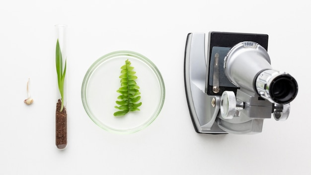 Planten en laboratoriumartikelen plat liggen