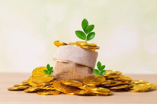 Planten groeien tussen munten