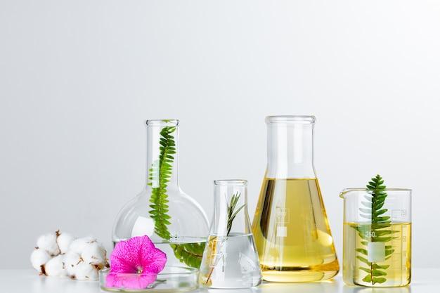 Planten in laboratoriumglaswerk. huidverzorgingsproducten en medicijnen chemisch onderzoek concept