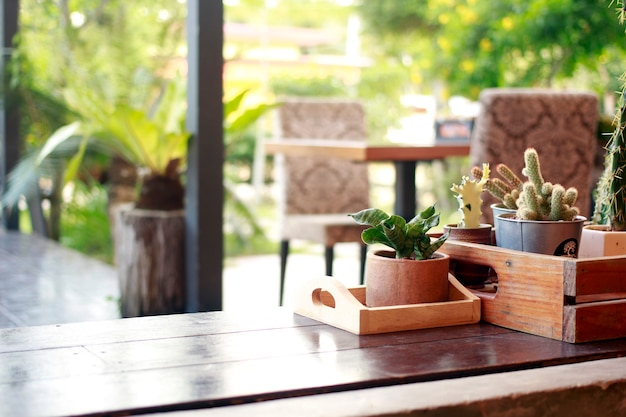 Planten in potten worden gebruikt om de plek te versieren.