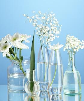 Planten in verschillende glazen containers op blauwe achtergrond