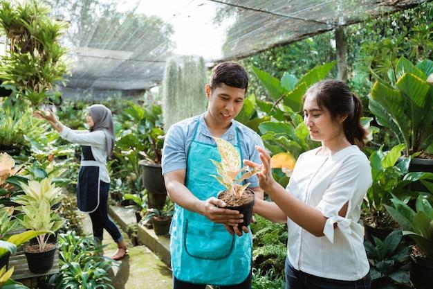 Planten kopen in de tuinwinkel