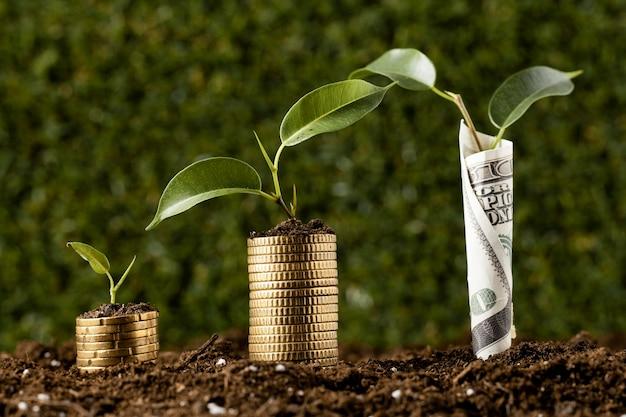 Planten met munten gestapeld op vuil en bankbiljetten