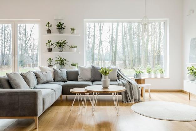 Planten op planken naast een raam in natuurlijk woonkamerinterieur met grijze hoekbank en tafel