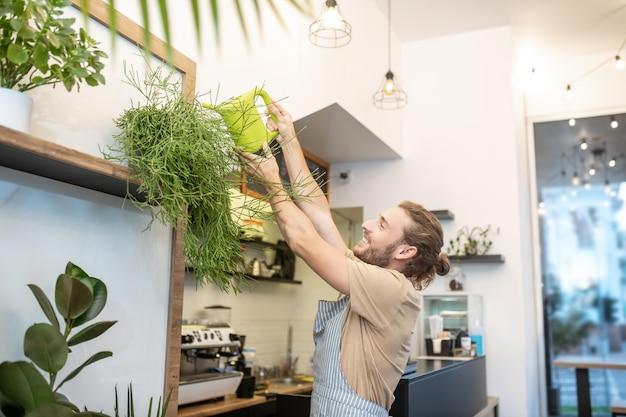 Planten verzorgen. gelukkig man in schort verhogen van zijn handen met gieter gieter plant staande hoog op de plank