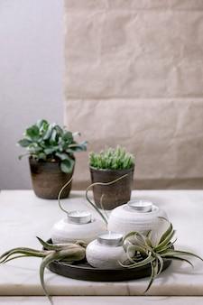 Plantensamenstelling met tillandsia lucht en ambachtelijke keramiek porseleinen kandelaars op zwarte plaat