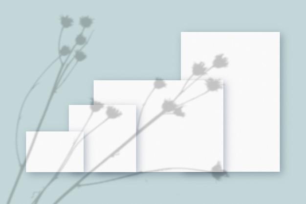 Plantschaduwen gesuperponeerd op 4 een horizontaal en verticaal vel gestructureerd wit papier op een blauwe tafelachtergrond