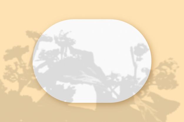 Plantschaduwen gesuperponeerd op een ovaal vel gestructureerd wit papier op een beige tafelachtergrond