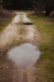 Plassen in het pad